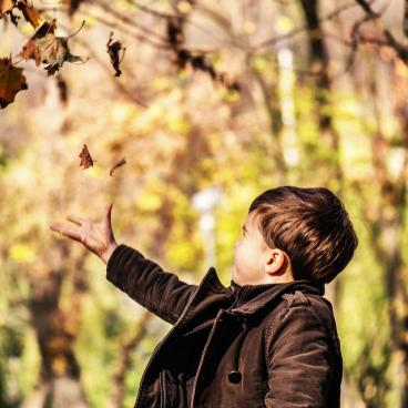 Toddler playing with falling leaves